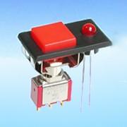 Drucktaster mit LED - Drucktastenschalter (L860*-F32A)
