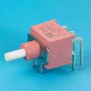 Sealed Pushbutton Switch - DP - Pushbutton Switches (NE8702-A4)