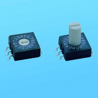 Rotary Switch - 10x10 SMT - Dip Switches (RM)
