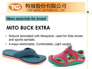 Shoes Series PU Synthetic Leather Introduction P10