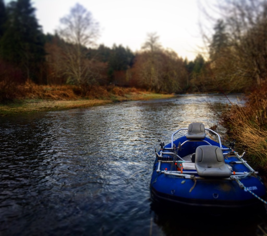 Chuyến đi câu cá