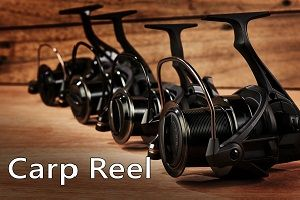 CARP REEL-UNIQUE CONNECTION TO NATURE
