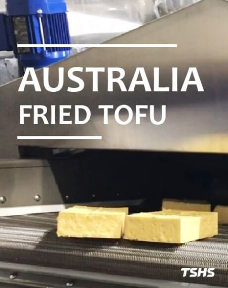 Australia - Fried Tofu Production Line - Continuous Oil Fryer