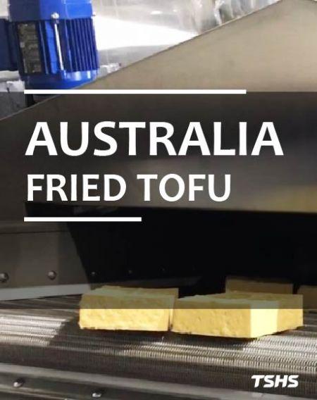 Úc - Dây chuyền sản xuất đậu phụ rán - Nồi chiên dầu liên tục - Đậu phụ rán kiểu Úc