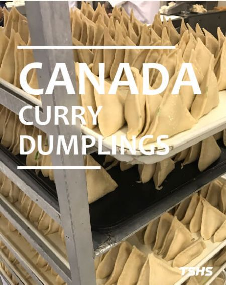 Canada -The smart way to Automation production - Fried Dumpling machine