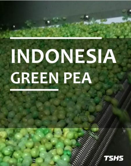 Indonesia - Beans Fried Bake Production Line - ถั่วอบอบ
