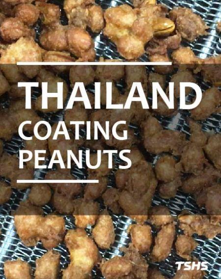 泰國-菓粉花生製程改善-批量式炒焙機 - 泰國-裹粉花生製程