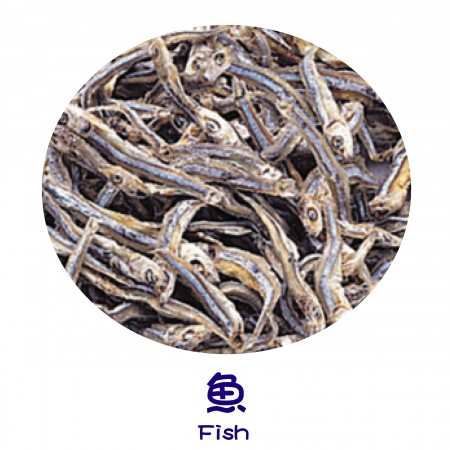 Finish Products – Fish