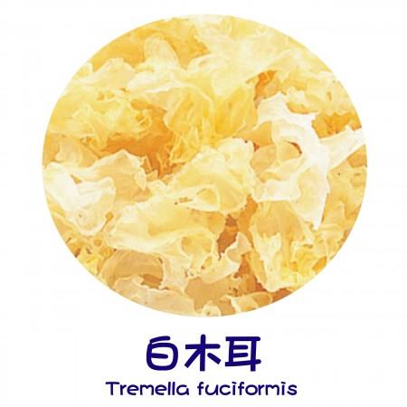Крайни продукти - Tremella Fuciformis