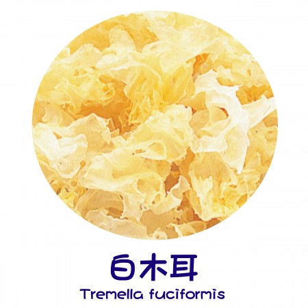 Finish Products – Tremella Fuciformis