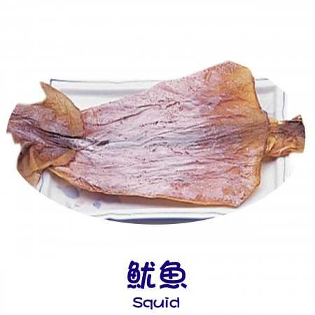 Finish Products – Squid