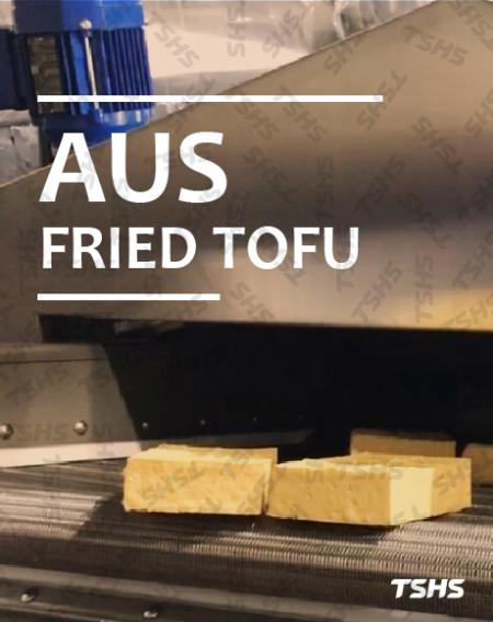 Australia - traditional manual fry savior - Continuous Oil Fryer