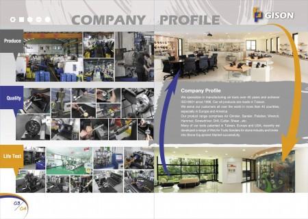 Perfil de la empresa GISON