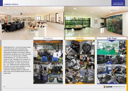 GISON Vállalati profil