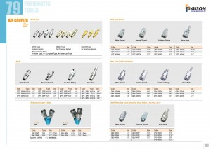 p79 80 Air Coupler Plug Socket
