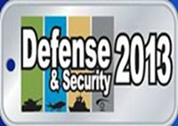 Defensa y seguridad 2013