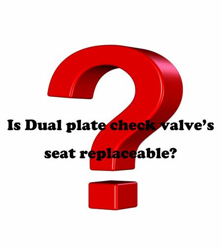 Q. Is Dual plate check valve's seat replaceable? - Is Dual plate check valve's seat replaceable?