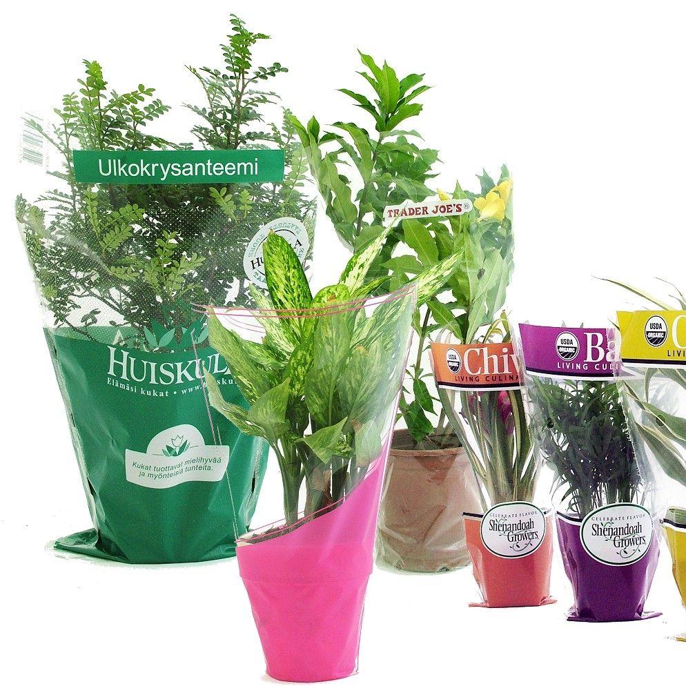 أكمام زهرة بوب مع تصميم مطبوع لترتيبات باقات الزهور الطازجة