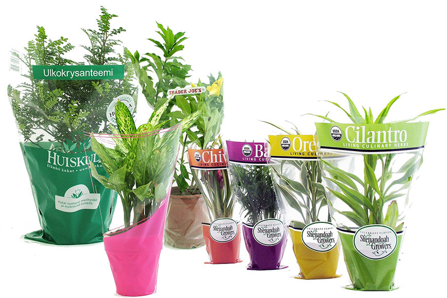 CPP Flower Sleeves Flower Wrapping for foliage plants,  potted flowers and potted plantss. Flower bags are available in Various designs, Patterns, Colors and Shapes. Sleeves can be printed with customers own logos