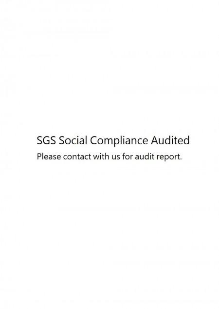 Соціальна відповідність SGS