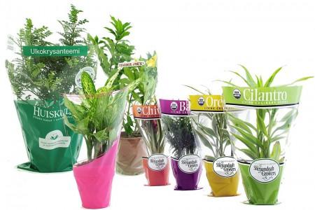 Kwiatowe rękawy CPP Zawijanie kwiatów - CPP Flower Sleeves Flower Wrap dla roślin liściastych, kwiatów doniczkowych i roślin doniczkowych. Woreczki kwiatowe są dostępne w różnych wzorach, wzorach, kolorach i kształtach. Na rękawach można nadrukować własne logo klienta