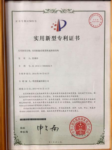 Patent Specification - Vegetable cutting machine's belt conveyor.