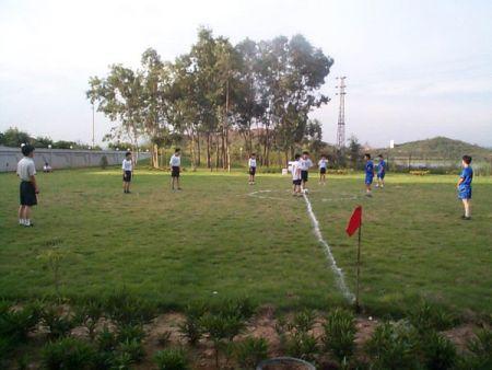 年度的足球比赛花絮。