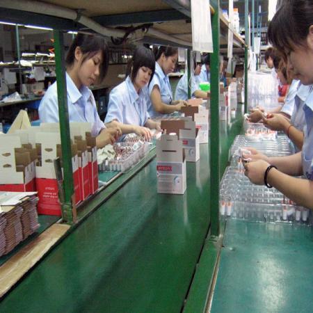 조가비 및 선물 상자 포장의 포장 생산 라인