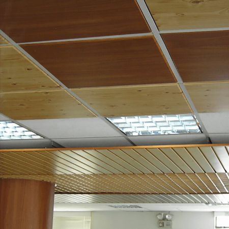 Laminated steel product for building material - ceiling