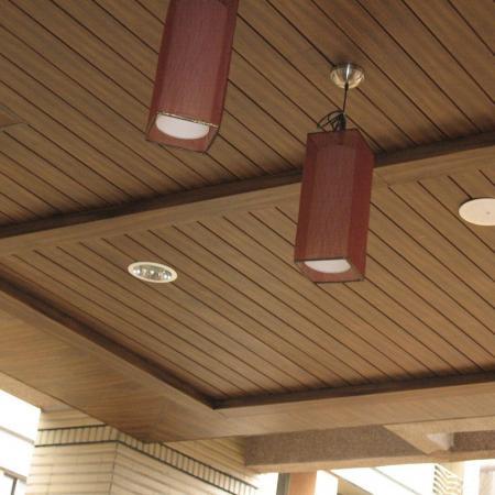 VCM-Ceiling