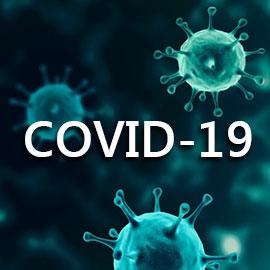 COVID-19 - Covid-19