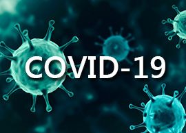 Covid-19特別セクション