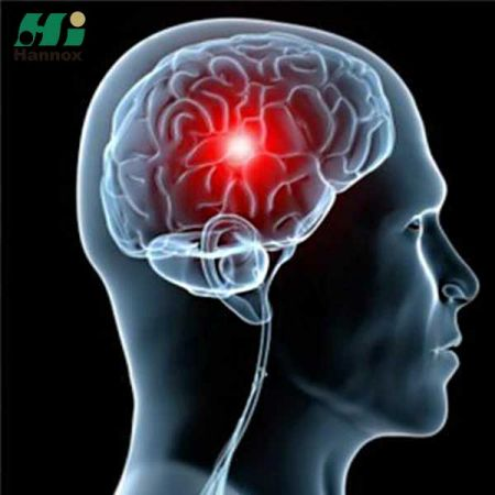 Central Nervous System (CNS) Products
