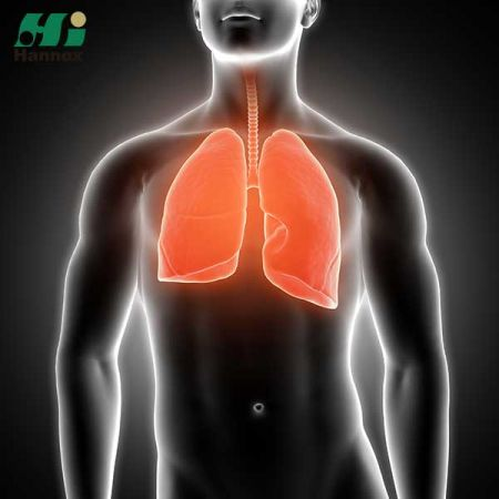 Respiratory Products - Respiratory