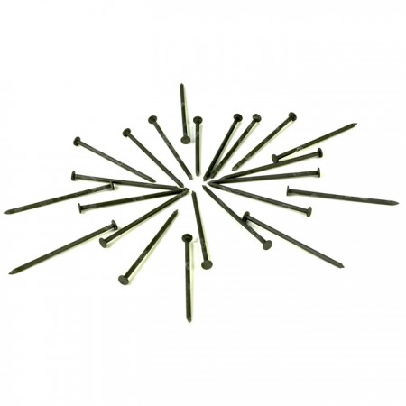 Common Nails Copy