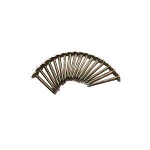 Umbrella Head Nails