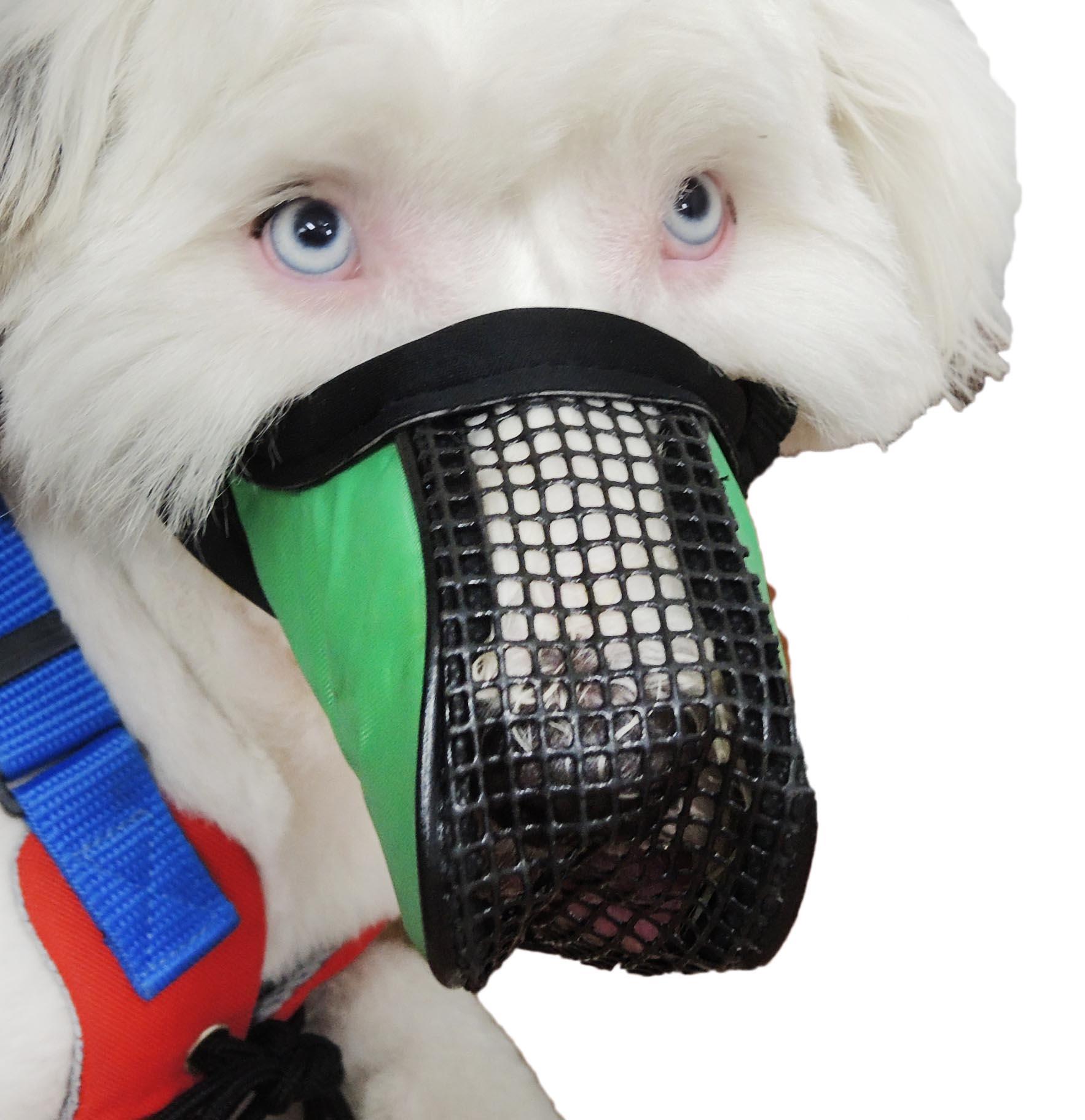 Mass Production Dog Muzzle/Dog Mouth Cover