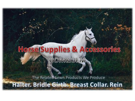 Horse Equine Supplies and Accessories