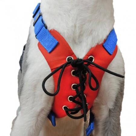No Pull Mesh Vest Harness - No Pull Mesh Vest Harness For Dogs