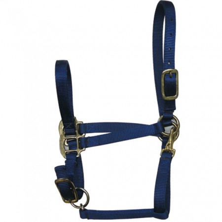 Nylon Halter with Hardware - Halter with Hardware