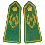 Blazer Badges/ Bullion Epaulettes - Bullion Epaulettes
