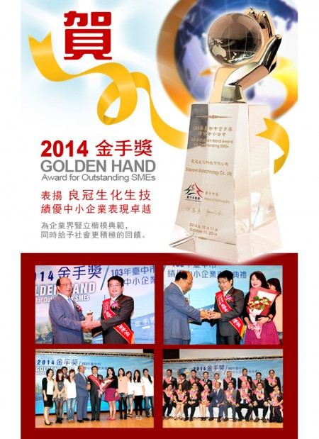 Golden Hand Award (Chinese Version)