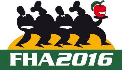 2016 FHA