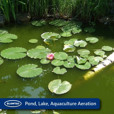 Aération aquacole de Pond Lake