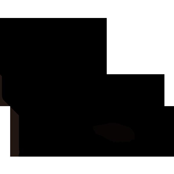 Modular Plug Wiring