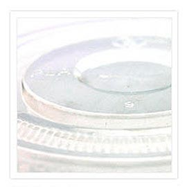 PLA Lid - Lid Biodegradable