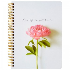 Fashion Notebook