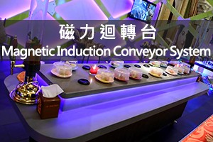 Magnetic Induction Conveyor System