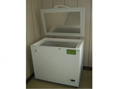 Refrigerator for low temperature test